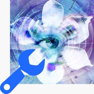 Blue Iris Support